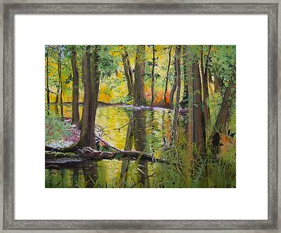 Illuminated Framed Print by Lucinda  Hansen