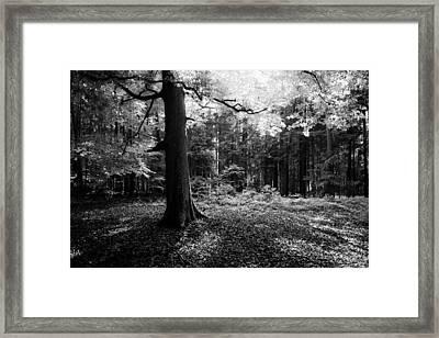 Framed Print featuring the photograph Illumination by Alexander Kunz