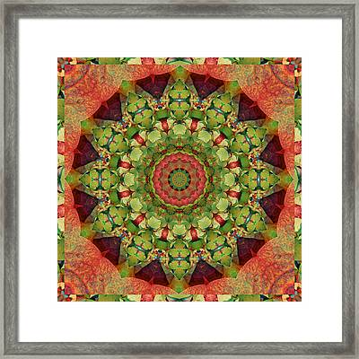 Illumination Framed Print