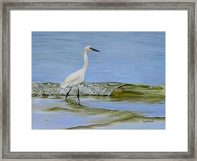 Illumination Framed Print by Phyllis Beiser