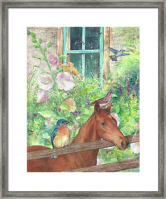 Illustrated Horse And Birds In Garden Framed Print