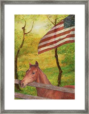 Illustrated Horse In Golden Meadow Framed Print