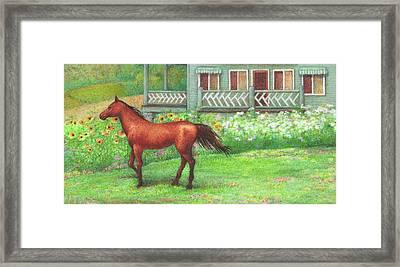 Illustrated Horse Summer Garden Framed Print