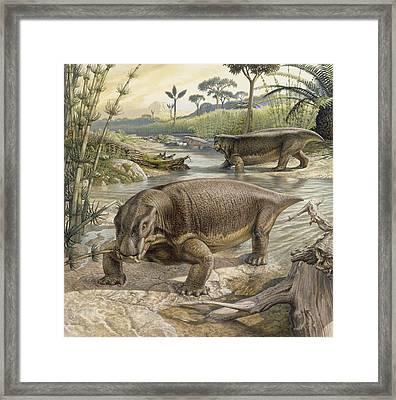 Illustration Of Lystrosaurus Framed Print by John Sibbick