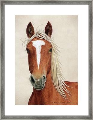 Illya Framed Print by Katherine Plumer
