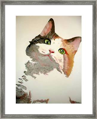 I'm All Ears Framed Print