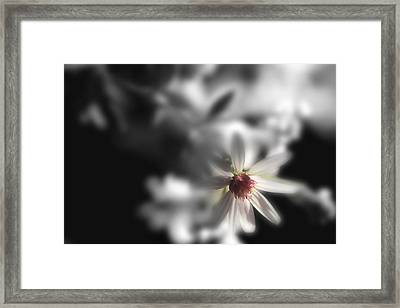 I'm Always With You Framed Print by Mike Eingle