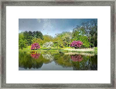 I'm Home Now Framed Print by Diana Angstadt