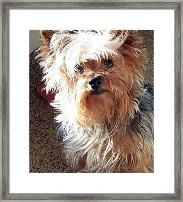 Im Hungry You Hungry? Framed Print