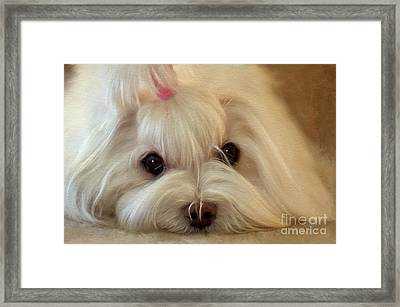 I'm Listening Framed Print by Lois Bryan