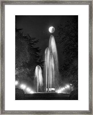 Framed Print featuring the photograph I'm Not Giving Up On You by Quality HDR Photography