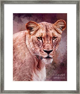 I'm Not Lion  Framed Print