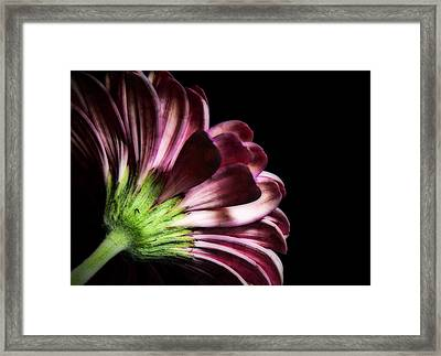 I'm Not Perfect Framed Print