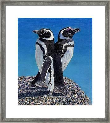 I'm Not Talking To You - Penguins Framed Print