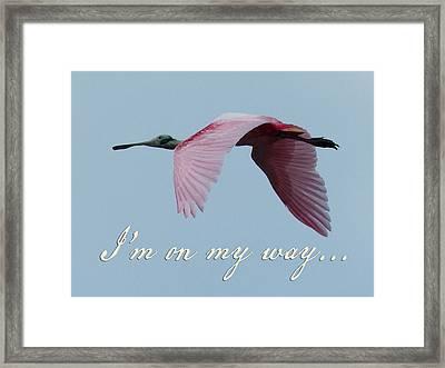 I'm On My Way Framed Print