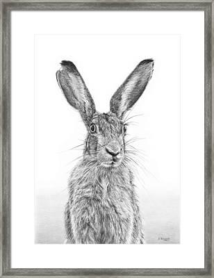 I'm Over Hare Framed Print by Frances Vincent