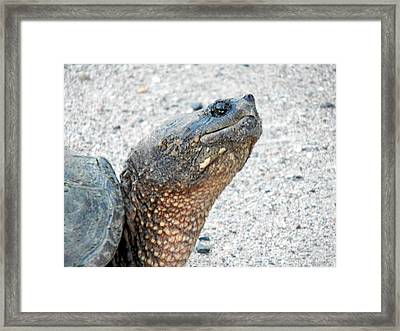 I'm Ready For My Close Up Mr Demille Framed Print