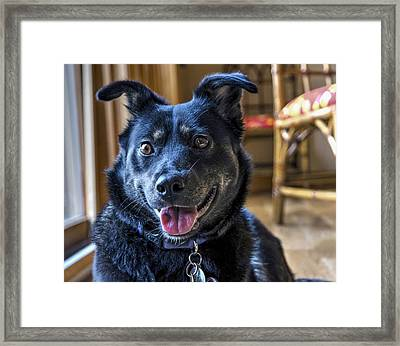 Ready When You Are Framed Print