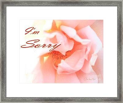 I'm Sorry Framed Print