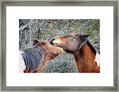 I'm The Boss Says Patricia Irene To April Star Framed Print
