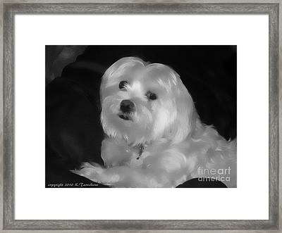 I'm The One For You Framed Print by Kathy Tarochione