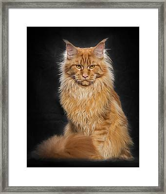 I'm Waiting For You Framed Print