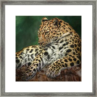I'm Watching Framed Print by Sandy Oman