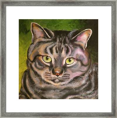 Im Your Man Tabby Framed Print