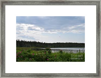 Images From Maine 2 Framed Print