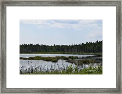 Images From Mt. Desert Island Maine 1 Framed Print