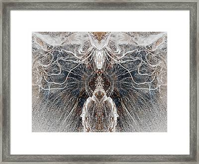 Images  In The Ice Framed Print