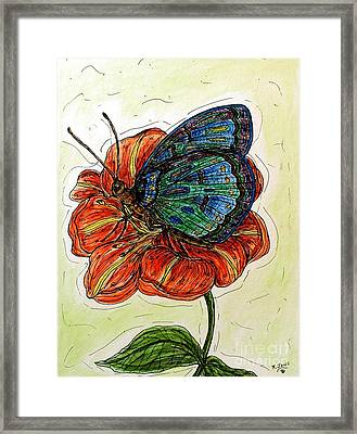 Imagine Butterflies A Framed Print
