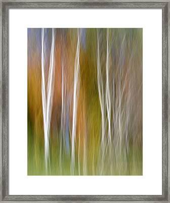Imagine Framed Print by Doug Hockman Photography
