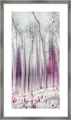 Imagine The Silence Framed Print by Priska Wettstein