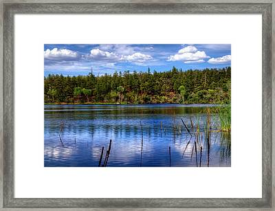 Imagine Framed Print by Thomas  Todd