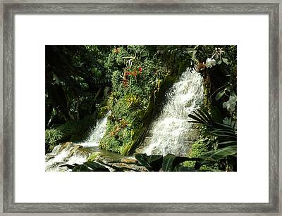 Immense Beauty Framed Print by Lori Mellen-Pagliaro