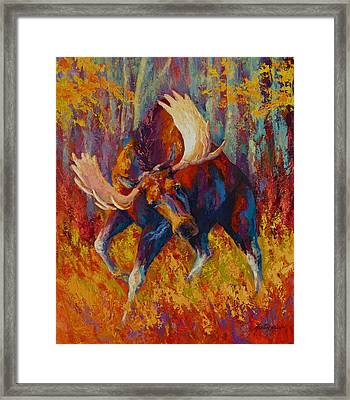 Imminent Charge - Bull Moose Framed Print