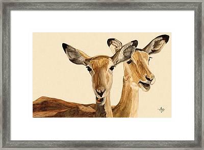Impalas Watercolor Framed Print