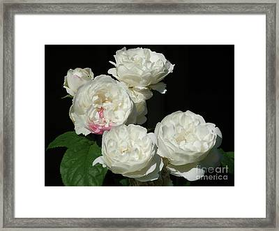 Framed Print featuring the photograph Imperfection by Victor K