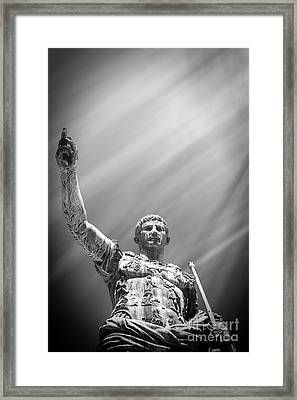 Imperial Majesty Framed Print