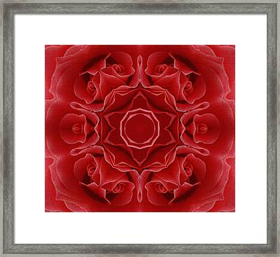 Imperial Red Rose Mandala Framed Print by Georgiana Romanovna
