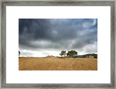 Framed Print featuring the photograph Impetuous by Laura Melis