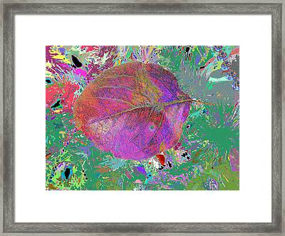 Imposition Of Leaf At The Season 4 Framed Print by Kenneth James