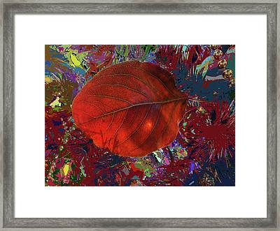 Imposition Of Leaf At The Season Framed Print by Kenneth James