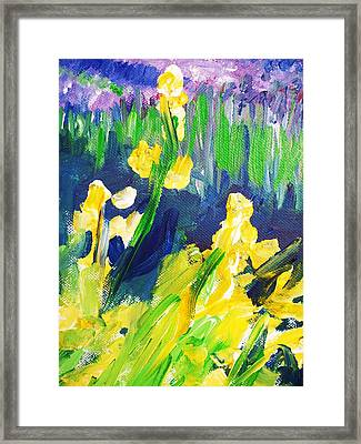 Impression Flowers Framed Print by Eric  Schiabor
