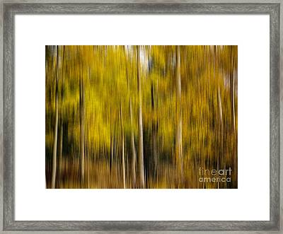 Impression Of Autumn Framed Print