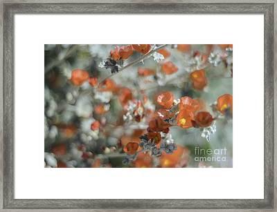 Impressionism Framed Print