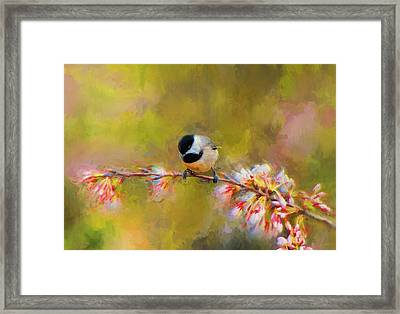 Impressionist Chickadee Framed Print by Jai Johnson