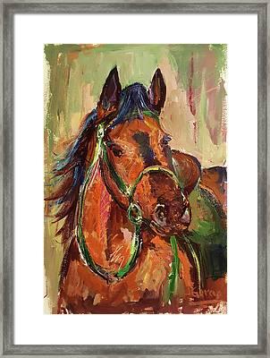 Impressionist Horse Framed Print