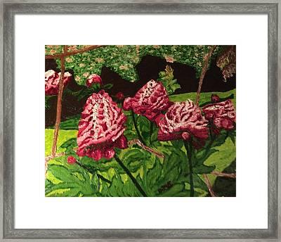 Impressionist Peony Garden Framed Print